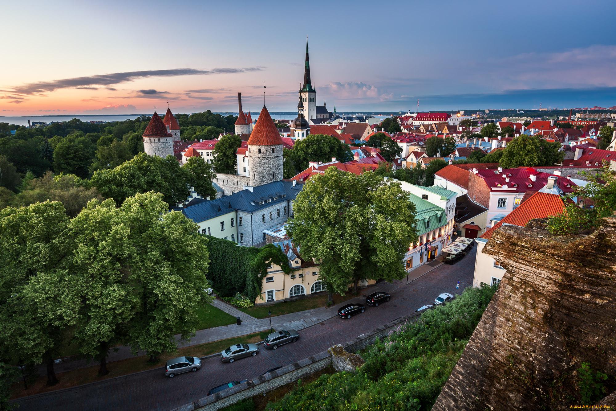 потребность эстония сегодня фото нужно